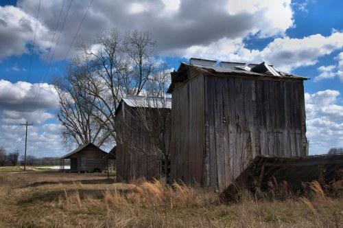 Tatnall County GA DL Dutton Road Historic Farmstead Tobacco Barns Cracker House Photograph Copyright Brian Brown Vanishing South Georgia USA 2015