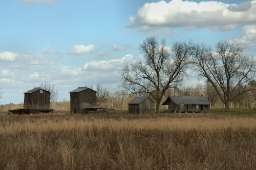 Tattnall County GA Historic Farmstead Photograph Copyright Briian Brown Vanishing South Georgia USA 2015