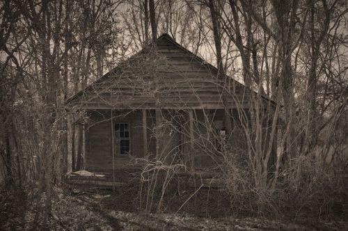 Tattnall County GA McLeod Road Abandoned Farmhouse Photograph Copyright Brian Brown Vanishing South Georgia USA 2015