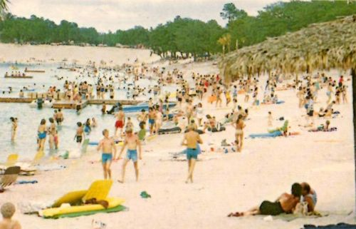 Crystal Lake Irwin County GA Beach 1980s Postcard Photograph