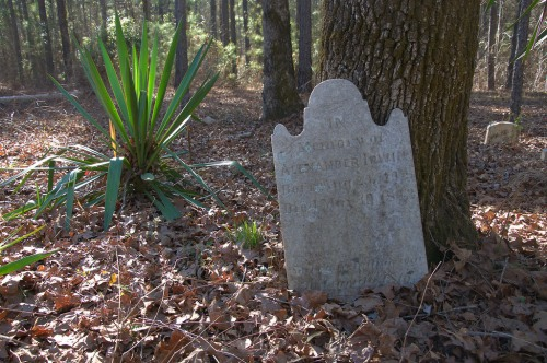 Irwin Family Cemetery Alexander Irwin Washington County GA Photograph Copyright Brian Brown Vanishing South Georgia USA 2015