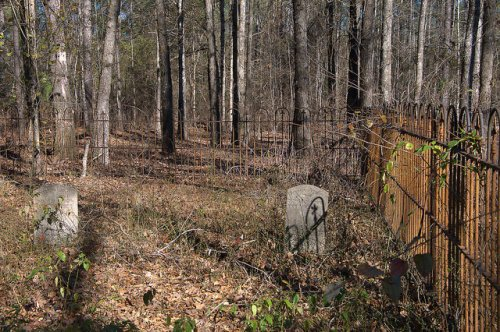 Irwin Family Cemetery Washington County GA Photograph Copyright Brian Brown Vanishing South Georgia USA 2015
