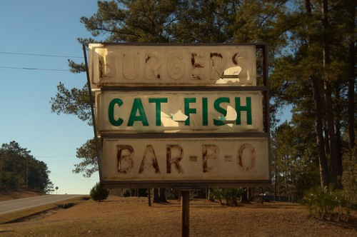 J D Williams Store Burgers Catfish Barbq Sign Jacksonville GA Photograph Copyright Brian Brown Vanishing South Georgia USA 2015