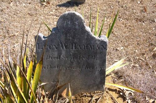 Jacksons Baptist Church Washington County GA Cemetery Lucy W Harman Photograph Copyright Brian Brown Vanishing South Georgia USA 2015