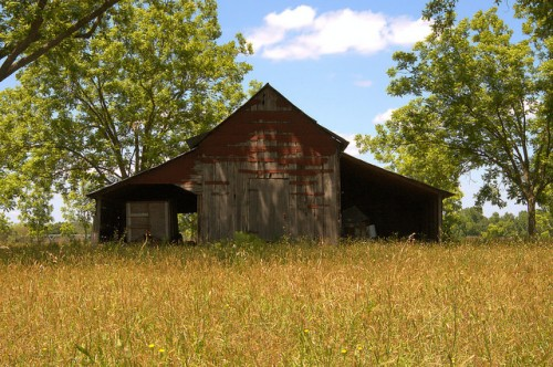 Barn Covered in Tar Paper Tattnall County GA Photograph Copyright Brian Brown Vanishing South Georgia USA 2015