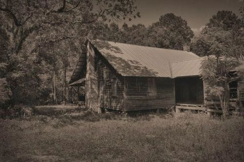 Tattnall County Dogtrot Side View Photograph Copyright Brian Brown Vanishing South Georgia USA 2015