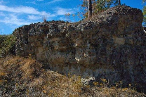 Altamaha Grit Sandstone Outcrop Middle Miocene Flat Tub Broxton Rocks Jeff Davis County GA Photograph Copyright Brian Brown Vanishing South Georgia USA 2015