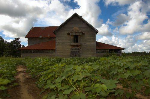 Candler County GA Jim Colemans Barn Rushton Farm Photograph Copyright Brian Brown Vanishing South Georgia USA 2015