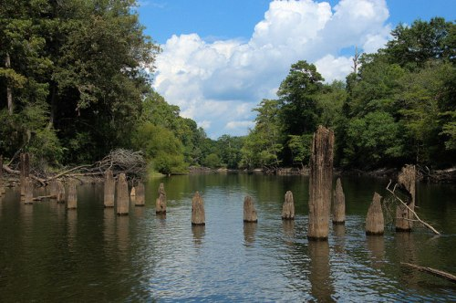 Rocky Ford Landing Ogeechee River Abandoned Railroad Trestle Photograph Copyright Brian Brown Vanishing South Georgia USA 2015