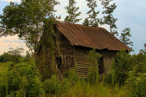 Screven County GA Abandoned Tenant Sharecropper House Photograph Copyright Brian Brown Vanishing South Georgia USA 2015