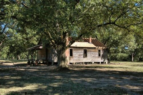 Irwin County GA Shotgun House Deconstruction Photograph Copyright Brian Brown Vanishing South Georgia USA 2015