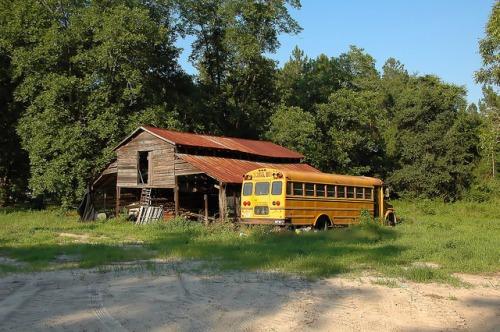 Atkinson County GA School Bus and Barn Near Coochee Creek Photograph Copyright Brian Brown Vanishing South Georgia USA 2015