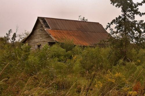 Candler County GA Abandoned Cracker Style Vernacular Farmhouse Photograph Copyright Brian Brown Vanishing South Georgia USA 2015