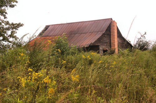 Candler County GA Abandoned Tenant Farm House Cracker Style Photograph Copyright Brian Brown Vanishing South Georgia USA 2015