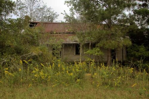 Candler County GA Vernacular Farmhouse Near Pulaski Goldenroad Autumn Photograph Copyright Brian Brown Vanishing South Georgia USA 2015