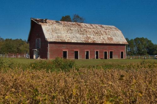 Tattnall County GA Old Hay Livestock Barn Photograph Copyright Brian Brown Vanishing South Georgia USA 2015