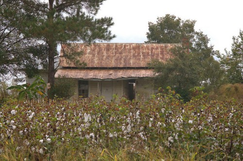 Barwick GA Brooks County Abandoned Tenant Farmhouse Photograph Copyright Brian Brown Vanishing South Georgia USA 2015