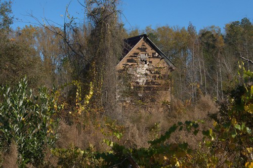 Ben Hill County GA Tobacco Barn Tar Paper Siding Photograph Copyright Brian Brown Vanishing South Georgia USA 2015