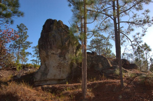 Reubin Lake Monolith Ben Hill County GA Photograph Copyright Brian Brown Vanishing South Georgia USA 2015