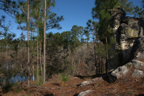 Reubin Lake Rock Outcroppings Ben Hill County GA Photograph Copyright Brian Brown Vanishing South Georgia USA 2015
