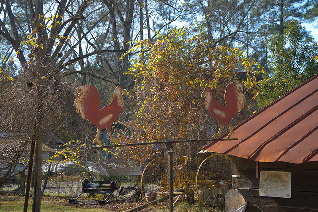 Bacon County GA Folk Art Yard Ornaments Roosters Photograph Copyright Brian Brown Vanishing South Georgia USA 2015