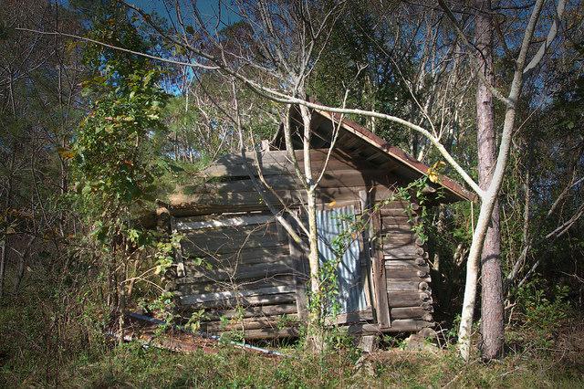 Bacon County GA Log Barn Photograph Copyright Brian Brown Vanishing South Georgia USA 2015