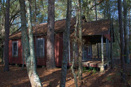 Bacon County GA Red House In the Woods Photograph Copyright Brian Brown Vanishing South Georgia USA 2015