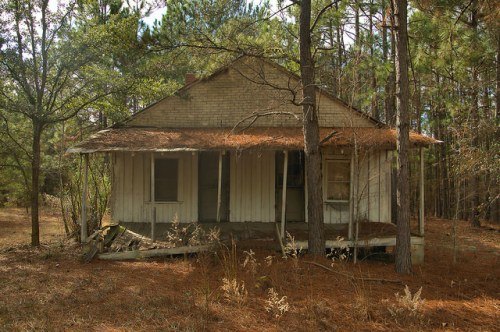 Dodge County GA Highway 23 Board and Batten House Planted Pines Photograph Copyright Brian Brown Vanishing South Georgia USA 2015