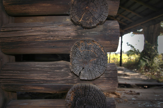 Pioneer Log House Details Bacon County GA Photograph Copyright Brian Brown Vanishing South Georgia USA 2015