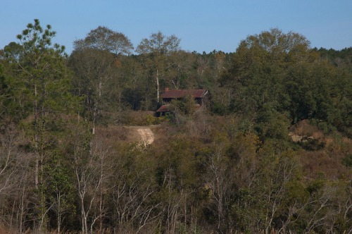 Tattnall County GA Unidentified Plantation Plain Farmhouse Photograph Copyright Brian Brown Vanishing South Georgia USA 2015
