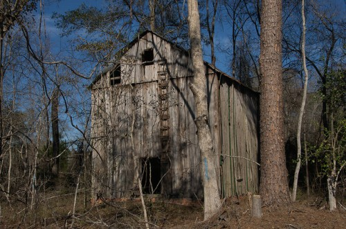 Bryan County GA Tobacco Barn Photograph Copyright Brian Brown Vanishing South Georgia USA 2016