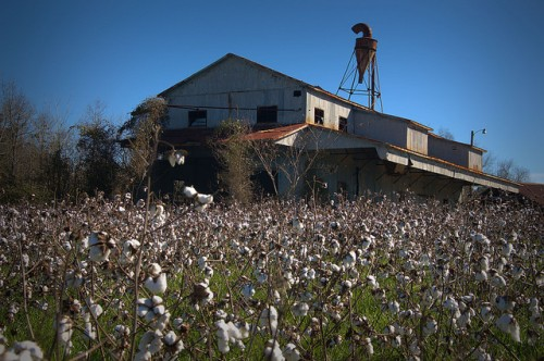 Harrison GA Wshington County Abandoned Cotton Gin Photograph Copyright Brian Brown Vanishing South Georgia USA 2016