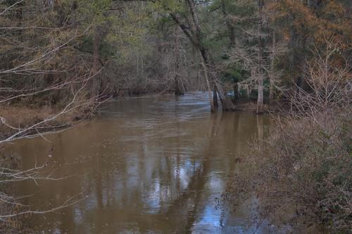 Ichawaynochaway Creek at Morgan Calhoun County GA Photograph Copyright Brian Brown Vanishing South Georgia USA 2016