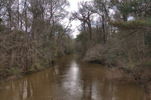 Ichawaynochaway Creek at Morgan GA Calhoun County Photograph Copyright Brian Brown Vanishing South Georgia USA 2016