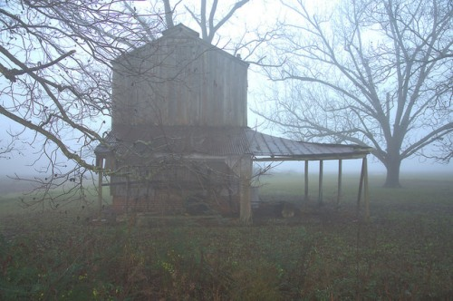 Irwinville Farms GA Bradford Farm FSA Tobacco Barn Photograph Copyright Brian Brown Vanishing South Georgia USA 2016