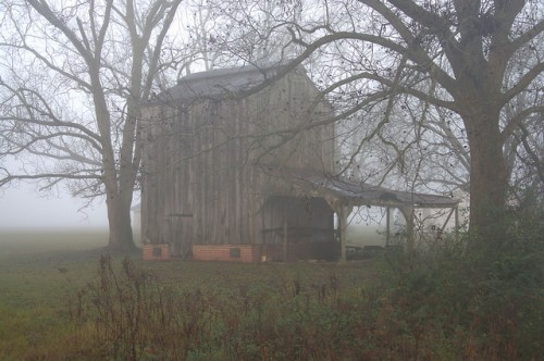 Irwinville Farms GA Bradford Farm Tobacco Barn Photograph Copyright Brian Brown Vanishing South Georgia USA 2016