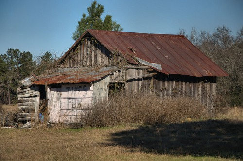 New Home GA Johnson County Barn Photograph Copyright Brian Brown Vanishing South Georgia USA 2016