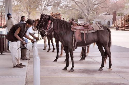 Surrency GA Appling County Hitching a Horse at Parkers Store Photograph Copyright Brian Brown Vanishing South Georgia USA 2016