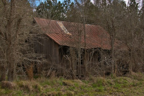 Abandoned Cracker Farmhouse Wheeler County GA Photograph Copyright Brian Brown Vanishing South Georgia USA 2016
