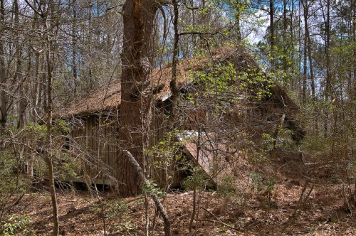 Board and Batten Farmhouse in the Woods Wheeler County GA Photograph Copyright Brian Brown Vanishing South Georgia USA 2016