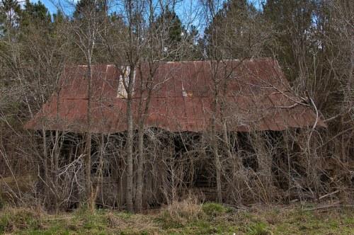 Cracker Style Farmhouse Wheeler County GA Photograph Copyright Brian Brown Vanishing South Georgia USA 2016