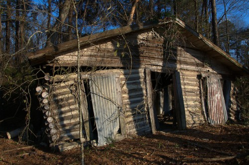 Screven County GA Abandoned Log House Ruins Photograph Copyright Brian Brown Vanishing South Georgia USA 2016