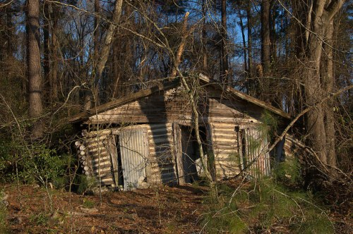 Screven County GA Abandoned Log House Ruins Rural Decay Photograph Copyright Brian Brown Vanishing South Georgia USA 2016