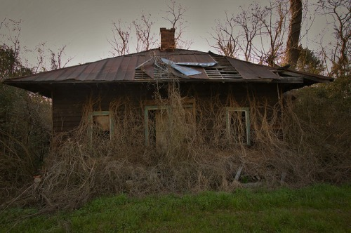 Screven County GA Abandoned Pyramidal Roof Tenant Farmhouse Photograph Copyright Brian Brown Vanishing South Georgia USA 2016