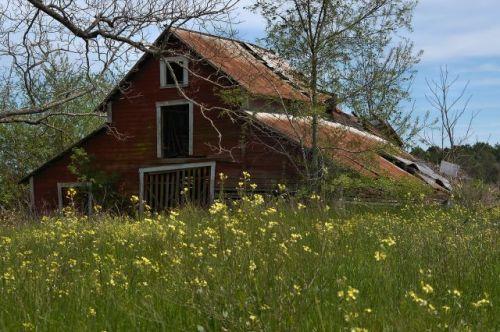 irwin county ga hay stock barn photograph copyright brian brown vanishing south georgia usa 2016