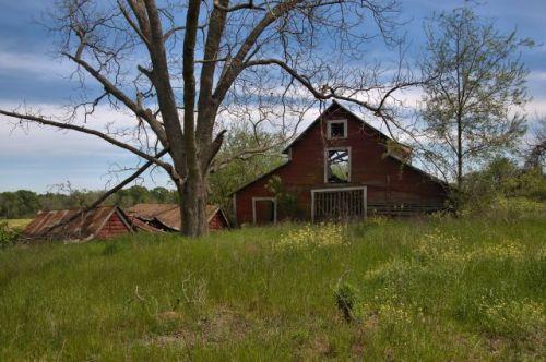 irwin county ga stock barn collapsed sheds photogrpah copyright brian brown vanishing south georgia usa 2016