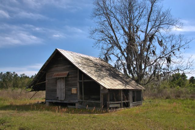 Powell Farm, Lanier County   Vanishing South Georgia Photographs by