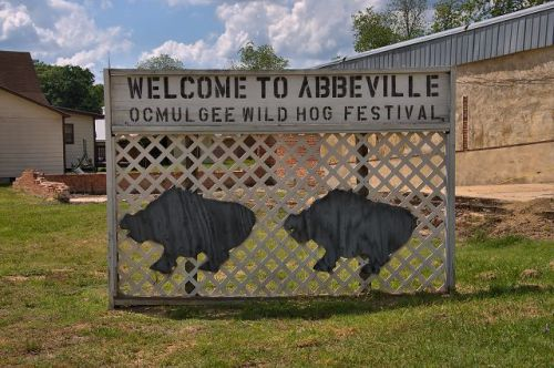 abbeville ga wild hog festival sign photograph copyright brian brown vanishing south georgia usa 2016