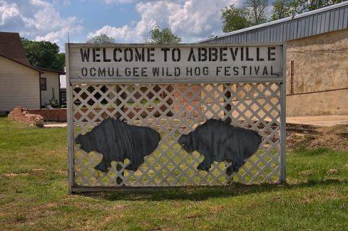 abbeville ga wild hog festival sign photograph copyright brian brown vanishing south georgia usa 2016