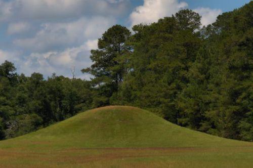 kolomoki mounds national historic landmark photograph copyright brian brown vanishing south georgia usa 2016
